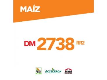 Maíz DM 2738 MGRR2
