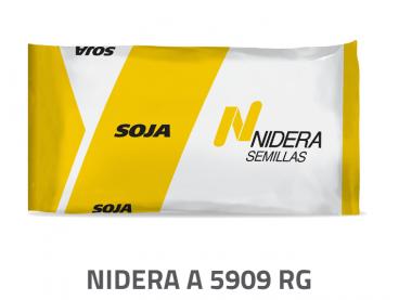 Soja NA 5909 RG