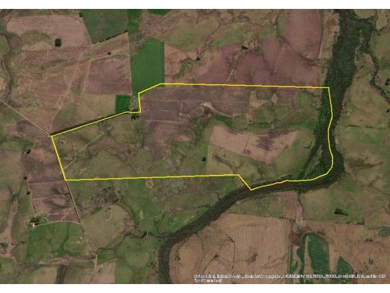 Campo de 292 hectareas en Risso