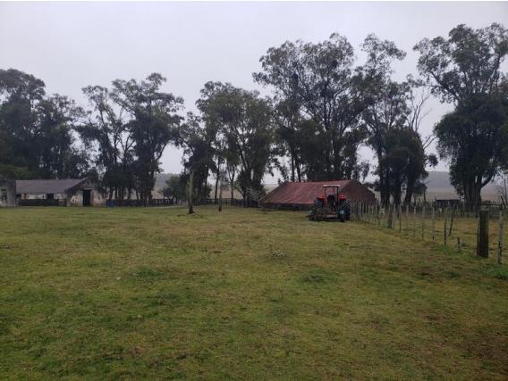 Campo de 913 hectareas en Castillos