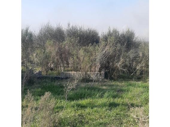 Terreno En Parque Postel Ciudad Del Plata