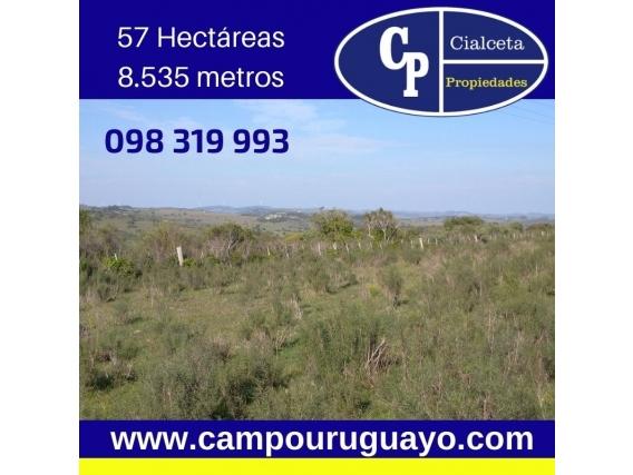 Campo En Ruta 12, Maldonado