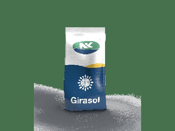 Girasol SYN 3990 CL