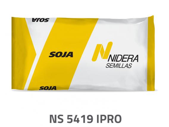 Soja NS 5419 IPRO