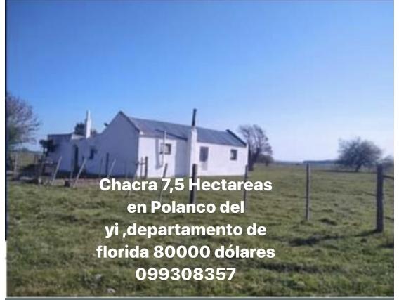 Polanco Del Yi Chacra 7.5 Hectareas 80000 Dólares