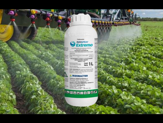 Adyuvante Rizospray Extremo®